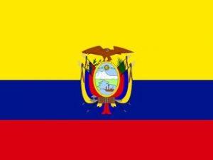Casilleros virtuales en Ecuador – La mejor manera de comprar en Amazon